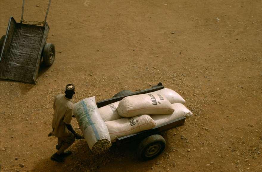 Man and a cart in Agadez