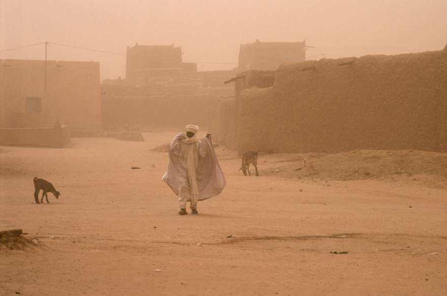 Man and goats on the street in Agadez