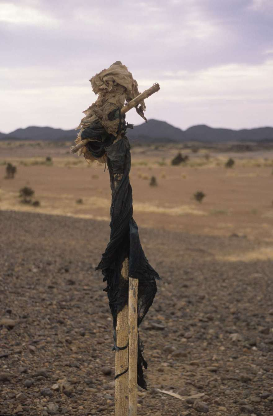 jackal scarecrow on a post in the desert