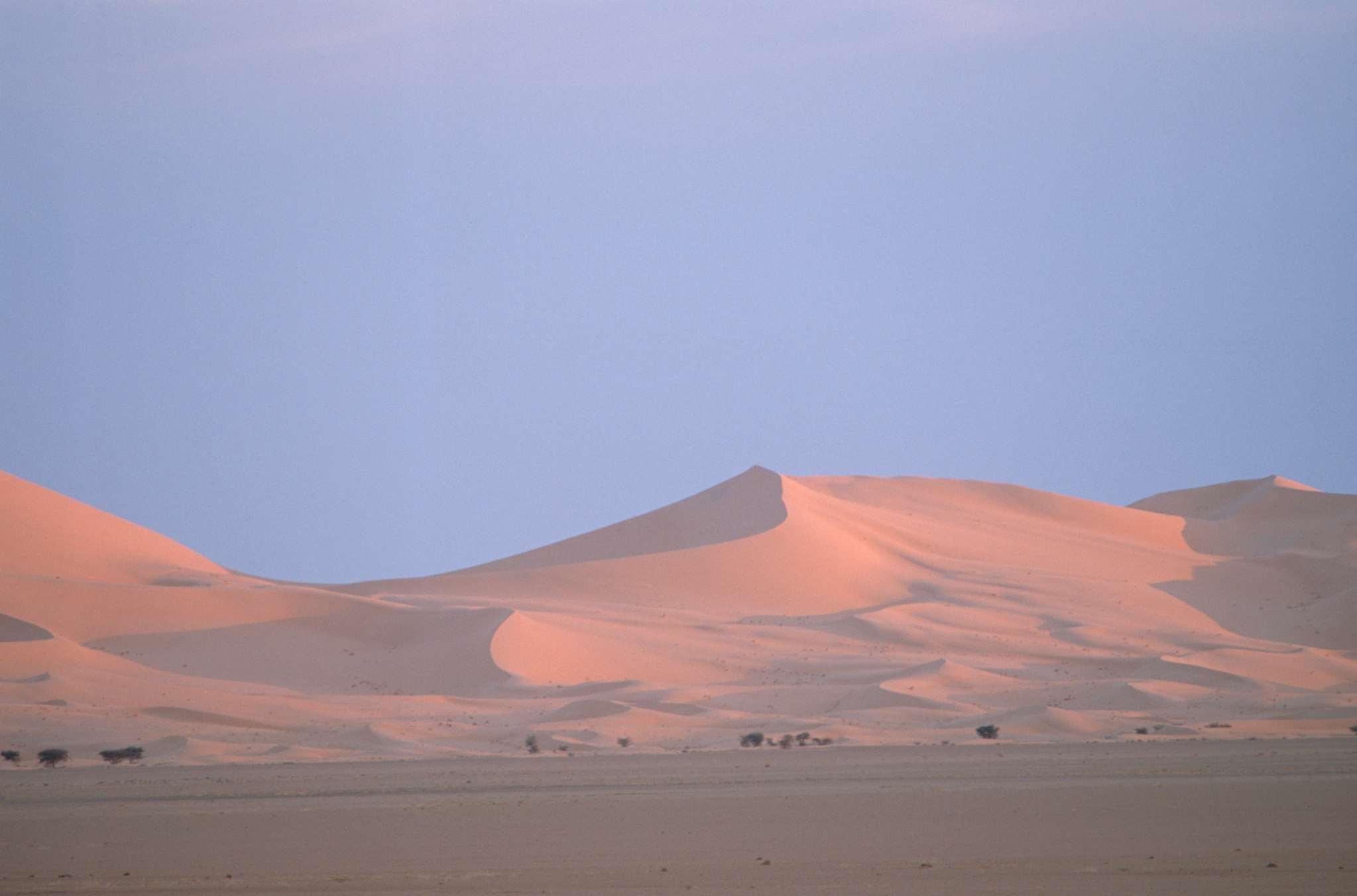 Pink dunes in dawn